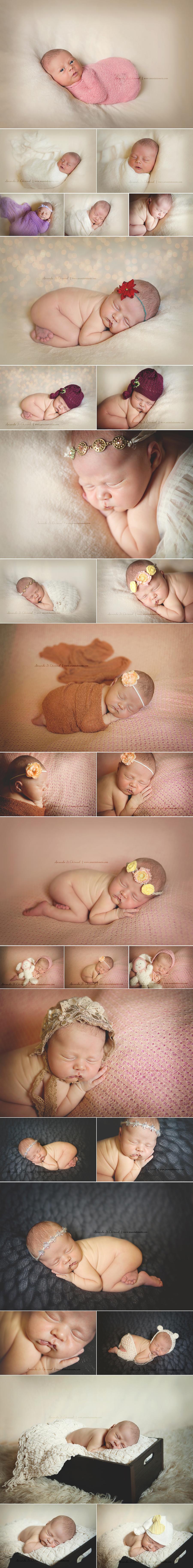 Jacksonville FL Newborn Photogarpher
